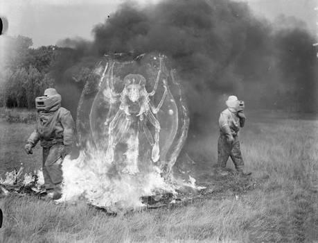ICSU Archives -  Feeding Burning entities