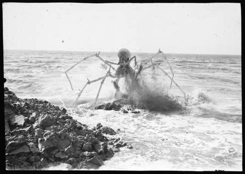 ICSU Archives - Jumping crypto-crustacean