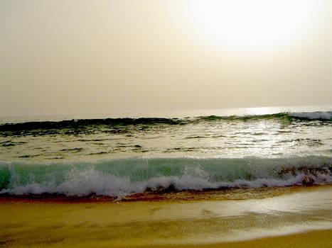 Praia do Pego - Comporta PT
