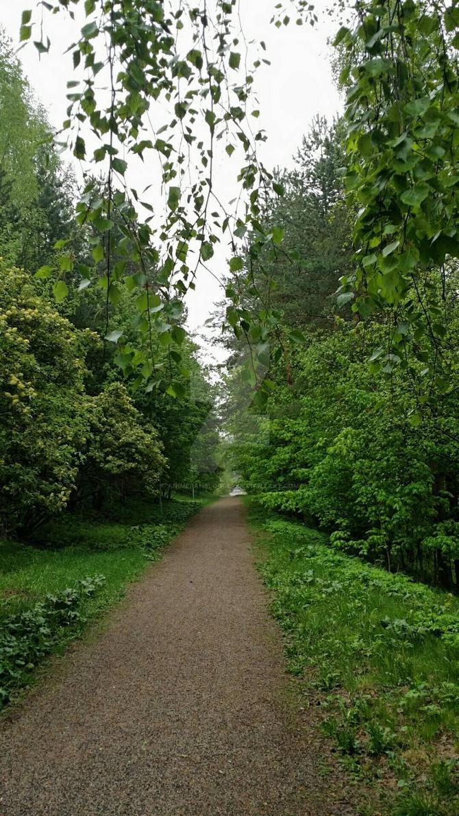 Green Path by AnimeFanBlogger