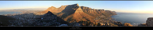 Lion's Head by BookofThoth