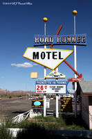 Roadrunner, Gallup, NM by rjcarroll