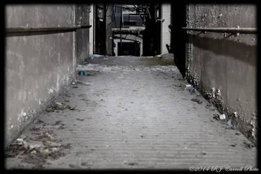 Ovenbake Asylum XLIII
