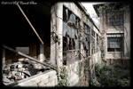 Ellis Island Hospital III by rjcarroll