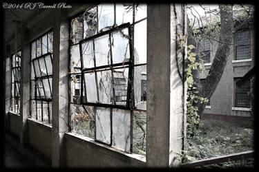 Ellis Island Hospital VI