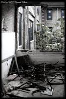 Ellis Island Hospital IX by rjcarroll