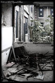 Ellis Island Hospital IX