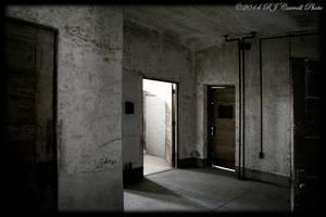Ellis Island Hospital XIII by rjcarroll