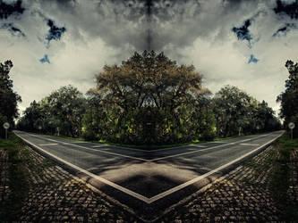 Path II by jmpotter