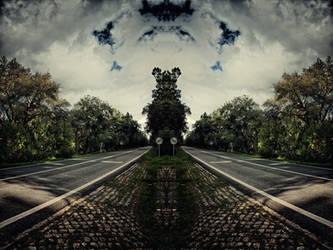 Path III by jmpotter