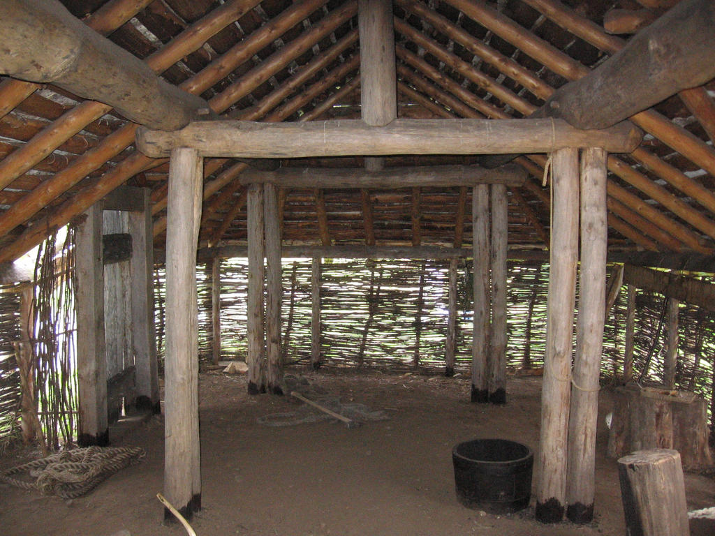 Twin Home Floor Plans Viking House Interior By Evilandy On Deviantart