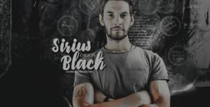 sirius orion black, id.