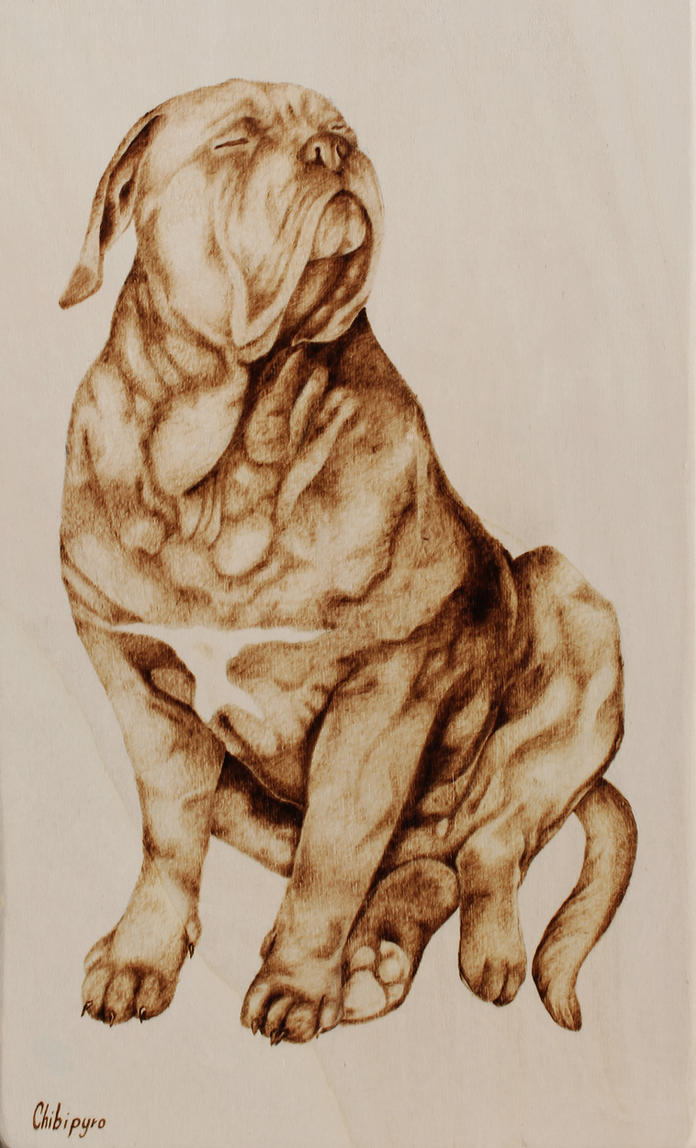 Dog Portray Pyrography by ChibiPyro