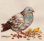 Pyrography Pigeon on Paper