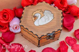 Swan celt zodiac box