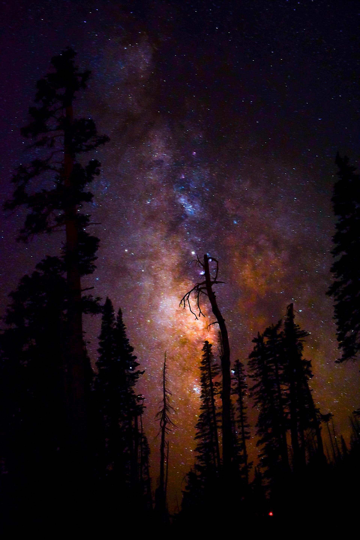Milky Way at Cedar Breaks