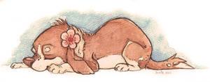 Don't be Weepy Sleepy Puppies