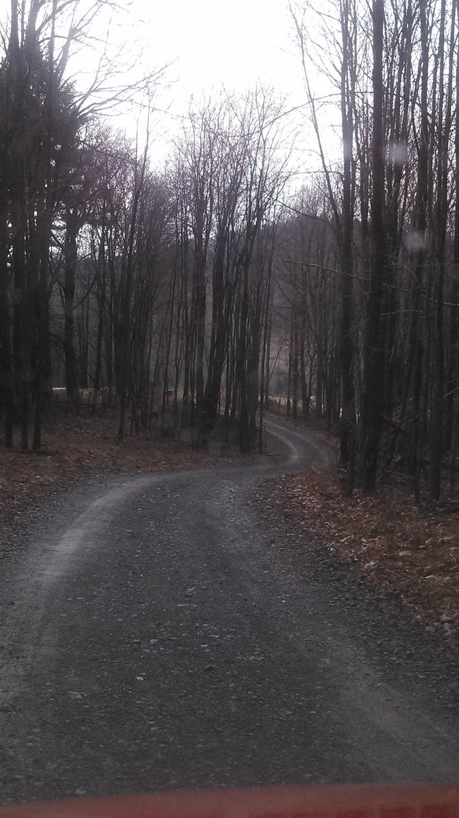 Wood road by freespiritmissy