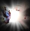 Butterfly Kiss by SunSakura