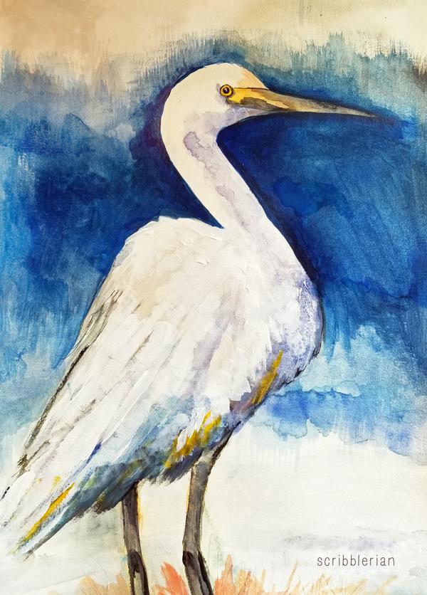 egret! by scribblerian