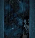 Dark Woods by DangerousBoy