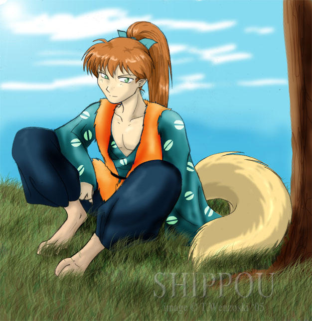 100 Ideas To Try About Inuyasha: What Would Shippo Look Like Grown Up Or Teenaged?