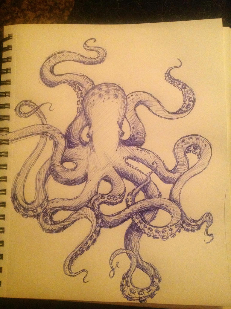 Octopus Tattoo Sketch Octopus Sketch by Bzuuboo