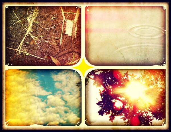 Elements by fuchsiadude