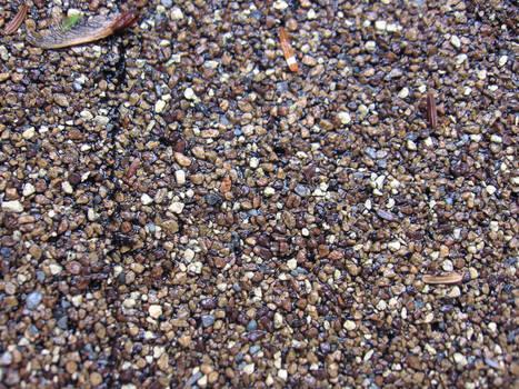 asphalt shingle 2