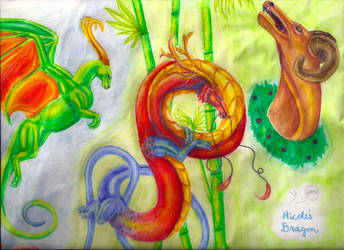 Dragon Collage Right Side by RuthlessWolves