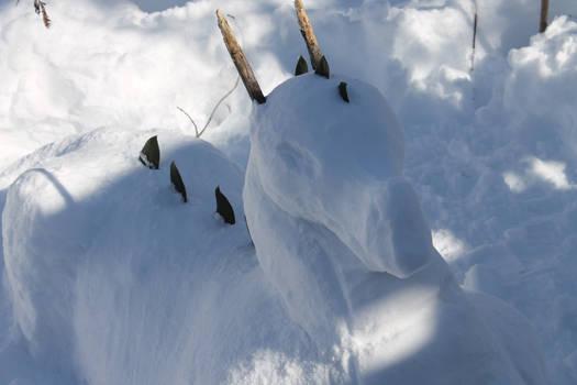 Snowdragon Head Closeup