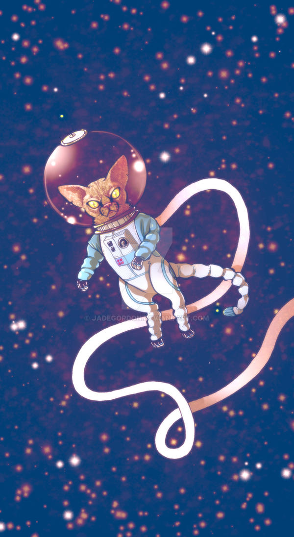 Space Cat by JadeGordon
