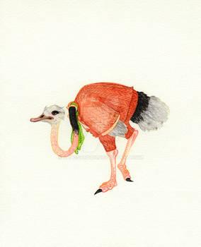 Ostrich in Menswear