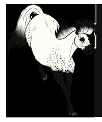 Frolicing Alice by DemonsKat