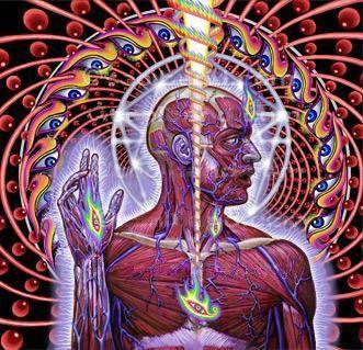 lateralus by rorekel