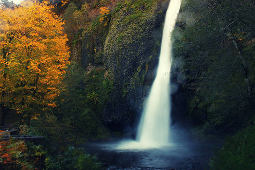 Horsetail Falls in Fall