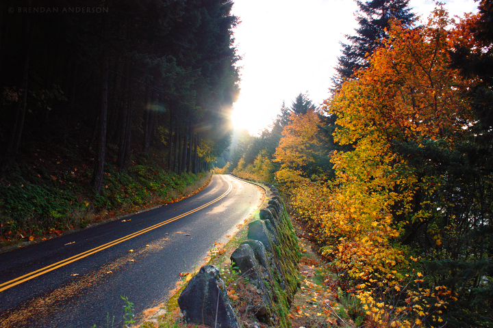 Historic Columbia River Road by pyro303