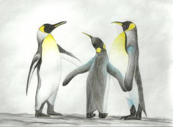 animals by animatorkarn