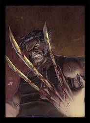 Wolverine by Wilustra