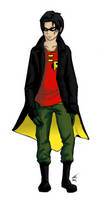 Robin(DC) redesign(DARKER COLORS SMOOTHED EDGES)