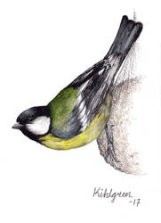 Great Tit (bird #39).