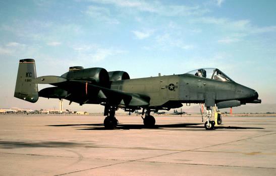 303d TFS A-10A
