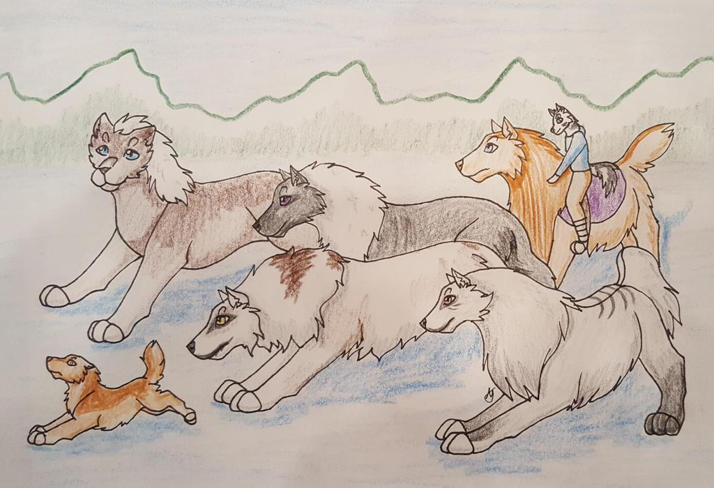 Coyote Hunt 4 by taikunfoo