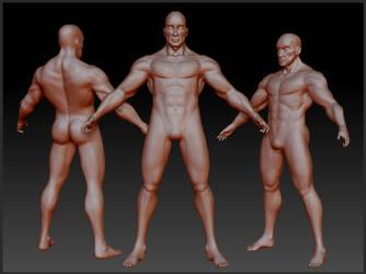 Male 3D Study by AsellusKamijo