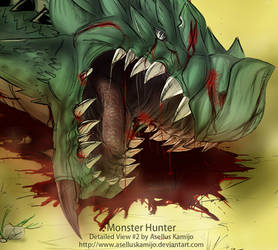 Monster Hunter Detailed View 2 by AsellusKamijo