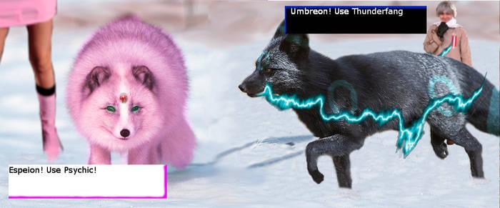 Umbreon vs Espeon! by CR0553