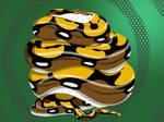 Sebastian the Tiger Reticulated Python 2