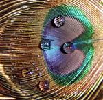 Eye3 by JAYSMILES23
