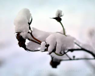 Snow by JAYSMILES23