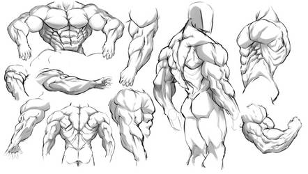 Muscle Practice